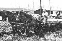 Transport at Whiteshell