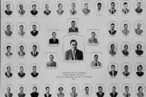 Nuclear Physics Branch 1950
